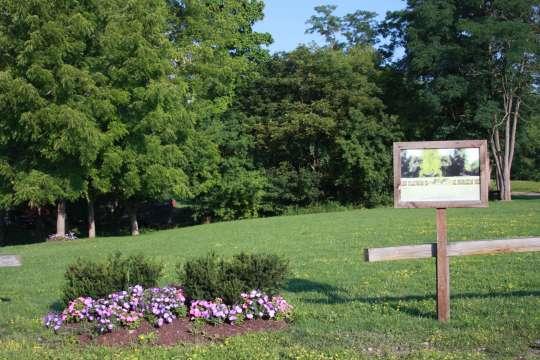 Steuben Senior Services Fund, Inc. | Community Garden